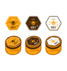 Hexagonal template honey labels in color variants vector