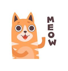 Red cat meowing cute cartoon pet animal making vector