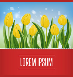 Spring banner with blooming tulip and copy space vector