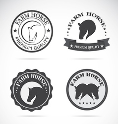 Horses labels vector image vector image