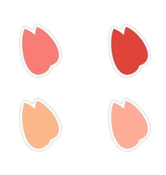 Assembly realistic sticker design on paper almonds vector