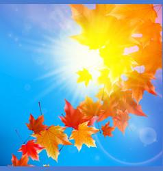 Delicate autumn sun with glare on blue sky vector