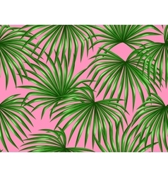 Seamless pattern with palms leaves Decorative vector image