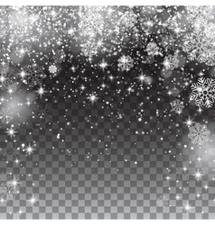 Snow snowflakes on a transparent background vector image