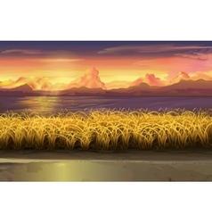 Sunset field landscape vector image vector image