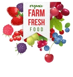 farm fresh emblem with berries vector image vector image