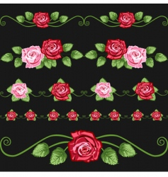 vintage roses on the black vector image vector image