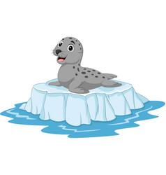cartoon seal on ice floe vector image