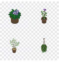 Isometric houseplant set of flowerpot fern vector