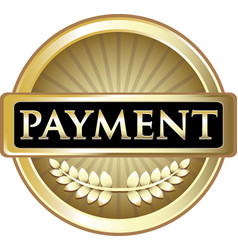 Payment gold icon vector