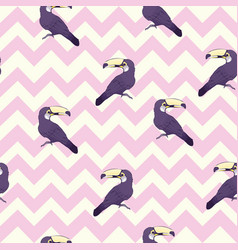 Seamless pattern with hand drawn toucan on white vector