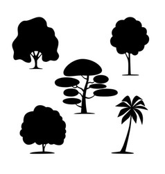silhouettes of trees on a white background vector image
