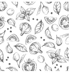 spices and herbs seamless pattern design vector image