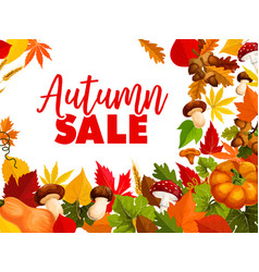 autumn sale fall season discount offer poster vector image