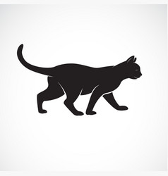 cat walking on a white background pet animals vector image