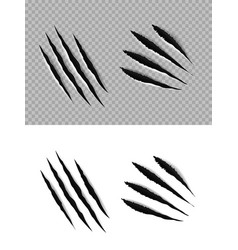 Claw marks and scratches animal paws and talons vector