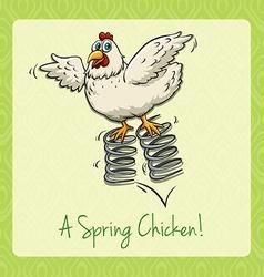 English idiom spring chicken vector image