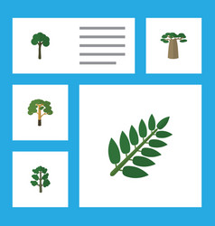 Flat icon ecology set of evergreen acacia leaf vector