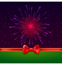 Holiday bright salute background with light rays vector image vector image