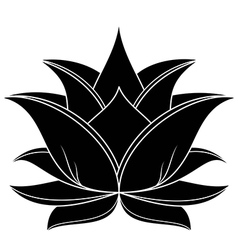 Lotus Flower vector image