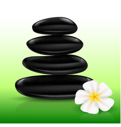 stones spa with white flower for design vector image