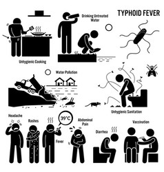 Typhoid fever unhygienic lifestyle poor vector