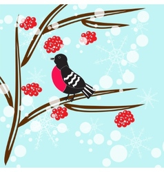 bullfinch branch vector image