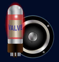 Amplifier valve and speaker cone vector