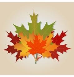 Bouquet of autumn vector