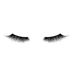 Eyelash or lash mascara icons vector