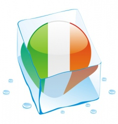 frozen button flag of ireland vector image vector image
