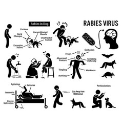 Rabies virus in human and animal stick figure vector