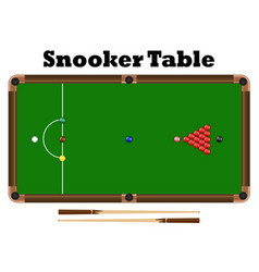 top view snooker ball on snooker table vector image