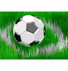 soccer ball on soccer field vector image vector image