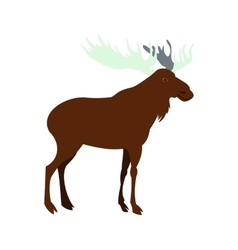 Deer icon flat style vector image