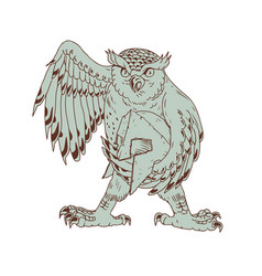 owl holding spartan helmet drawing vector image