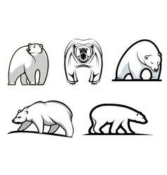 Set of cartoon polar bears vector image
