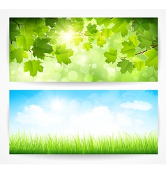 Spring banners vector image vector image