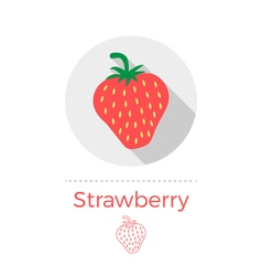 Strawberry vector image vector image