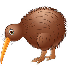 cute kiwi bird cartoon vector image