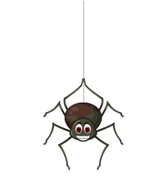 cute spider cartoon for you design vector image