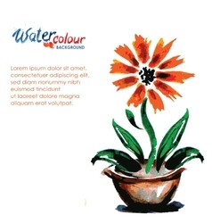 flower in a pot on a white background and place vector image