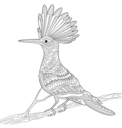 Hoopoe bird adult coloring page vector