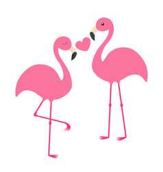Pink flamingo couple holding heart love family vector