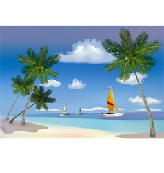 The sea yachts palm trees vector image vector image