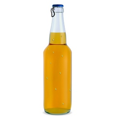 transparent bottle with a light beer vector image vector image