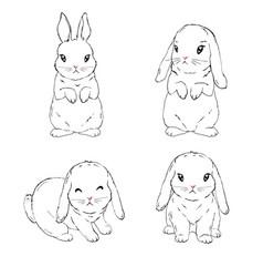 bunny rabbit easter symbols cart set hand drawn vector image