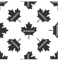 Canadian maple leaf with city name winnipeg icon vector