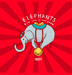 Circus elephant badge performance on the ball vector