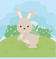 cute rabbit animal farm character vector image